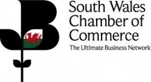 South wales chamber recruitment agency